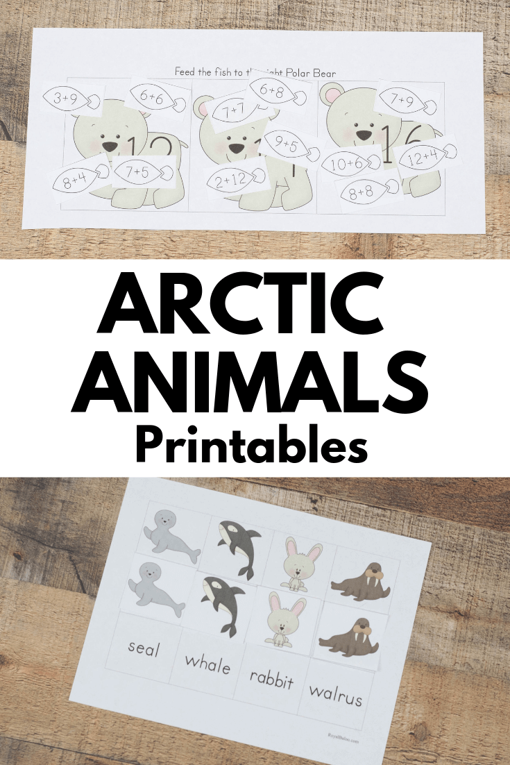 Arctic Animal Printable Packs For Preschool And Kindergarten Royal Baloo
