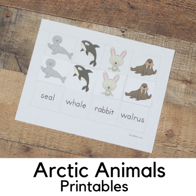 Arctic Animal Printable Packs for Preschool and Kindergarten