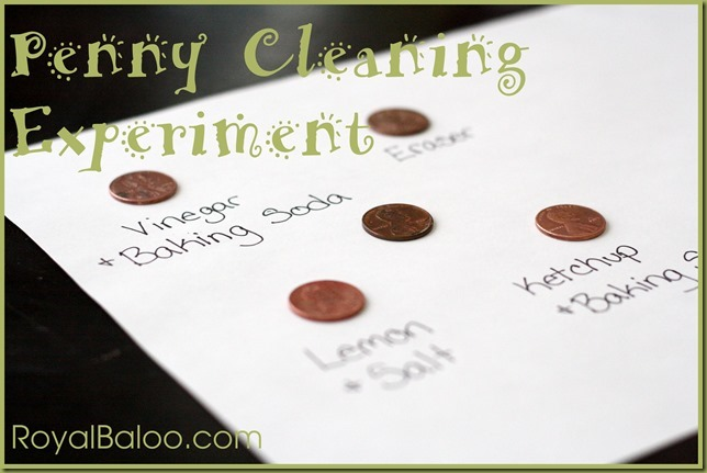 Penny Cleaning Experiment for preschoolers