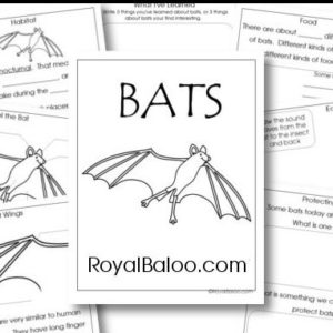 BatUnityStudy.jpg