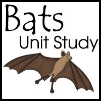 Free Bat Unit Study