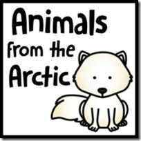 arcticanimals