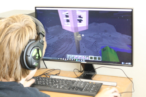 Online Summer Camps in Minecraft. Bolster summer learning with these engaging camps!