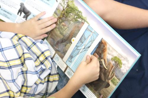 Scanorama: Amazing Animals. Interactive Children's Books chock full of great information for homeschoolers!