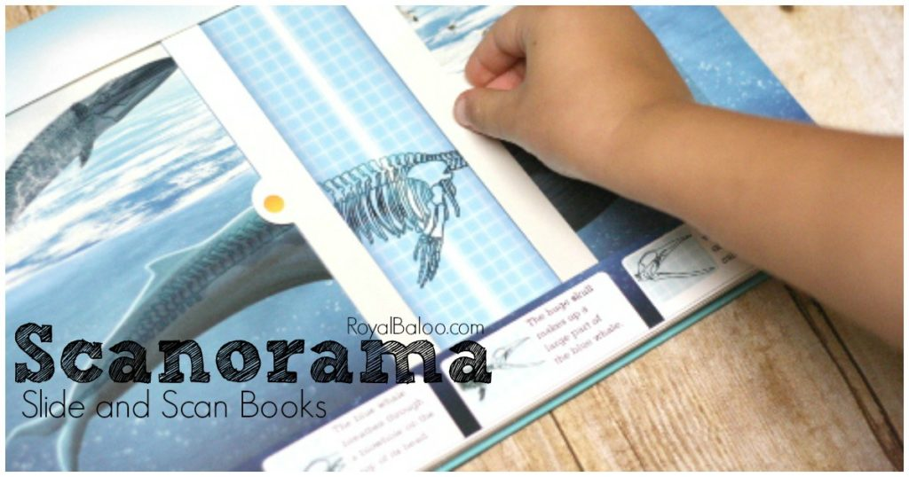 Scanorama: Amazing Animals. Interactive Children's Books chock full of great information for homeschoolers!