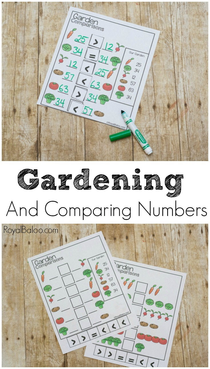 Practicing comparing single and double digit numbers with the garden comparisons pages. Using gardening and vegetables, comparisons have never been so easy.