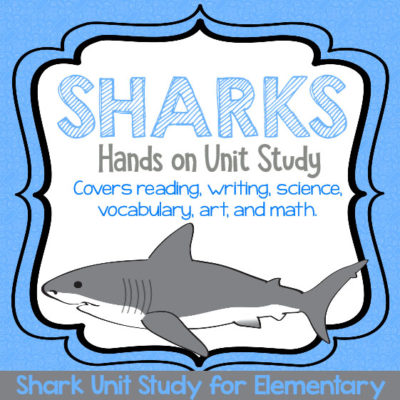 Hands-on Shark STEAM Unit Study for Fun Shark Learning