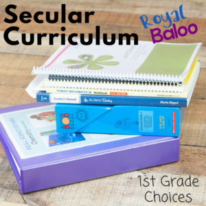 Need ideas for a 1st grade secular homeschool curriculum? This post details everything we will be using this year for our 1st grader!