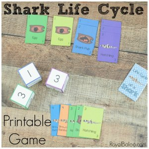 Shark Life Cycle Game – STEAM Gameschooling