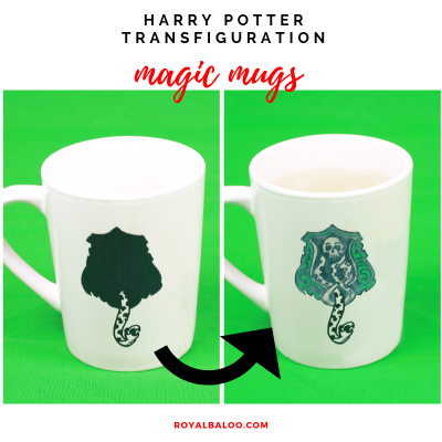 Harry Potter Transfiguration Class with Coloring Changing Mugs