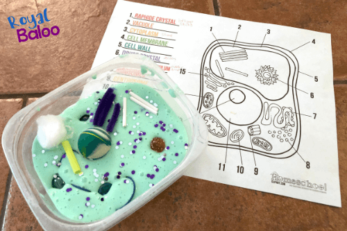 plant cell made from slime