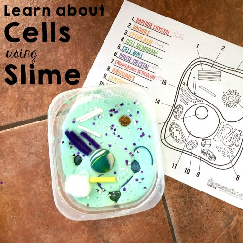 slime in a container with worksheet