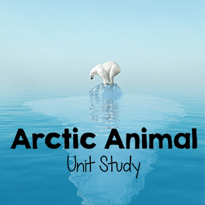 Arctic Animals Unit Study for Kids