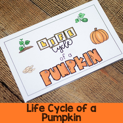 Life Cycle of a Pumpkin Printables
